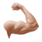http://www.erevollution.com/public/game/icons/big_strength.png